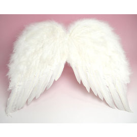 天使の羽 Lサイズ